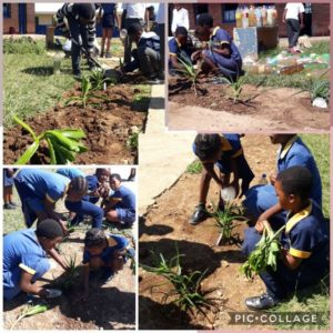 full-service-south-africa-school